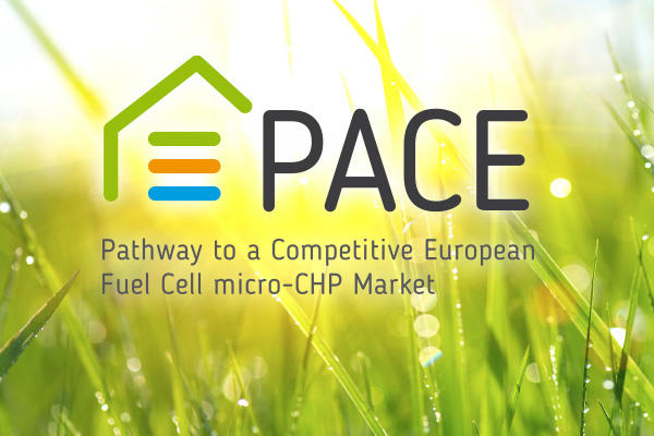 PACE-Project
